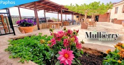 40% discount at the Mulberry Terrace restaurant