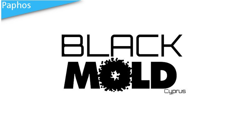 Black Mould Cleaning Service - buy a voucher for €20 to save 20%